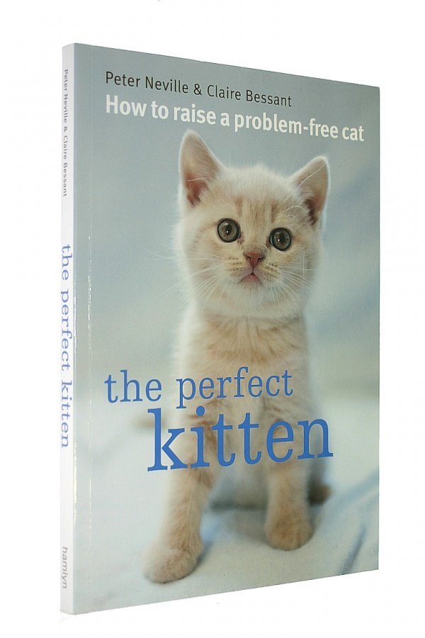 The Perfect Kitten How to Raise a Problem Free Cat
