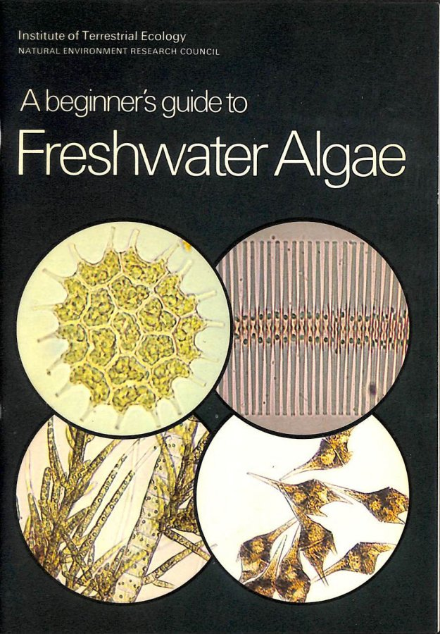 Image for A Beginner's Guide to Freshwater Algae
