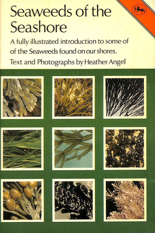 Image for Seaweeds of the Seashore (Cotman-color)