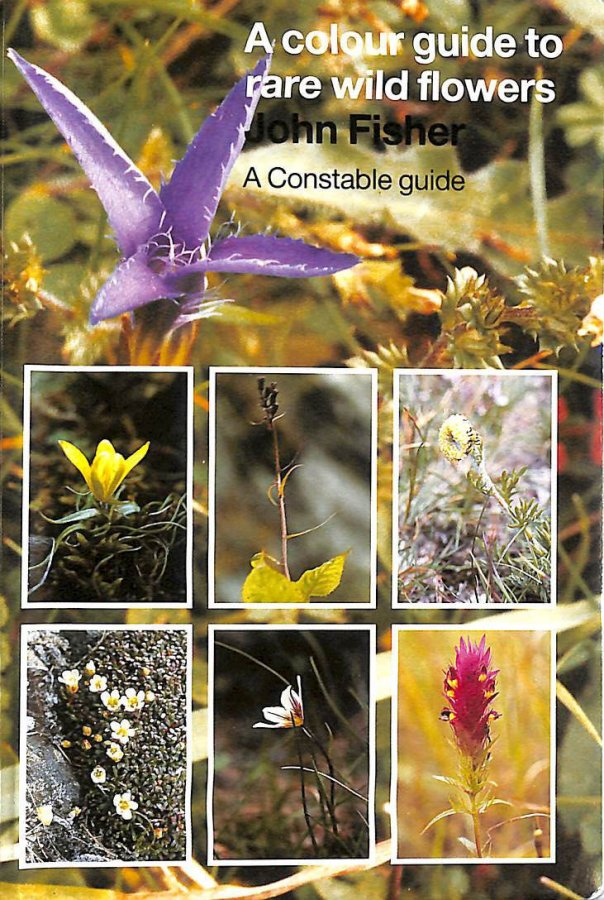 Image for A Colour Guide to Rare Wild Flowers