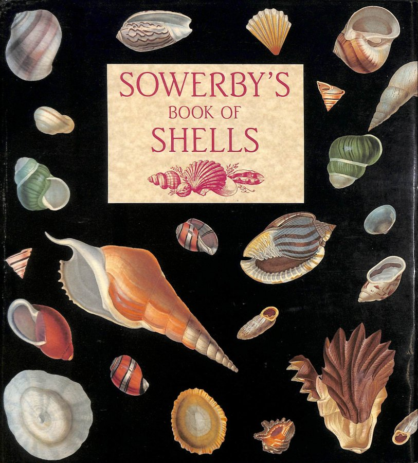 Image for Sowerby's Book of Shells