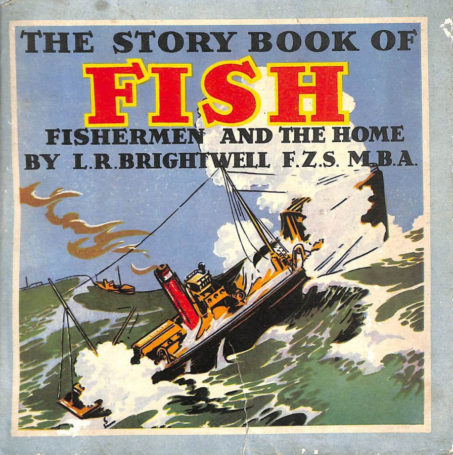 Image for The Story Book of Fish Fishermen and the Home