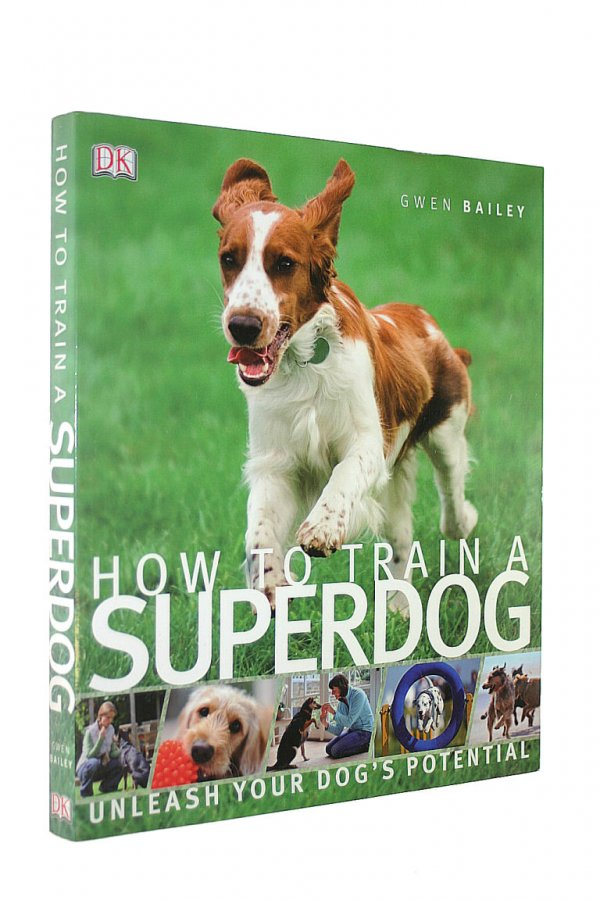 Image for How to Train A Superdog
