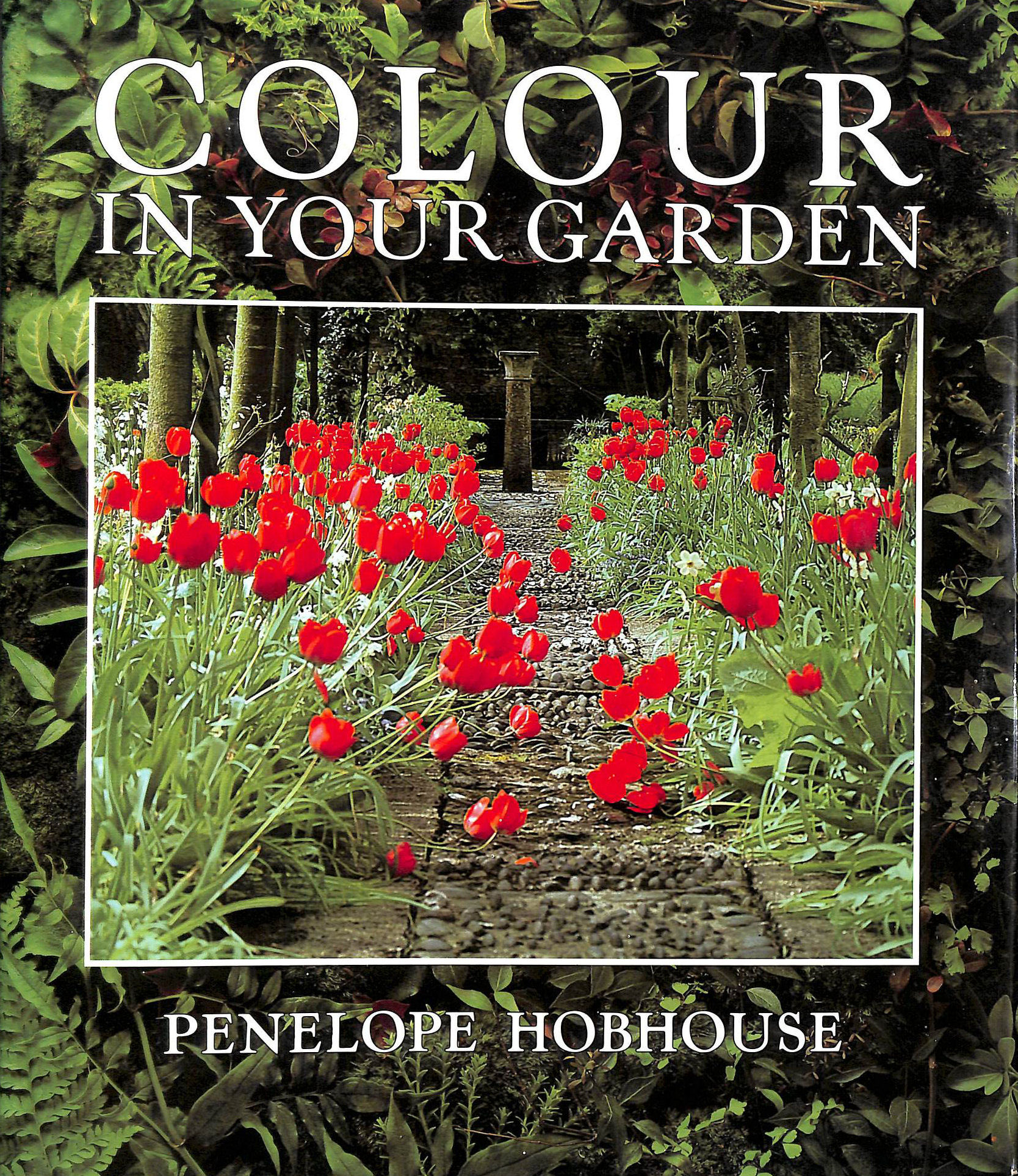 Image for Colour In Your Garden: A Practical Sourcebook