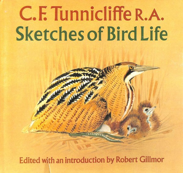 Image for Sketches of Bird Life