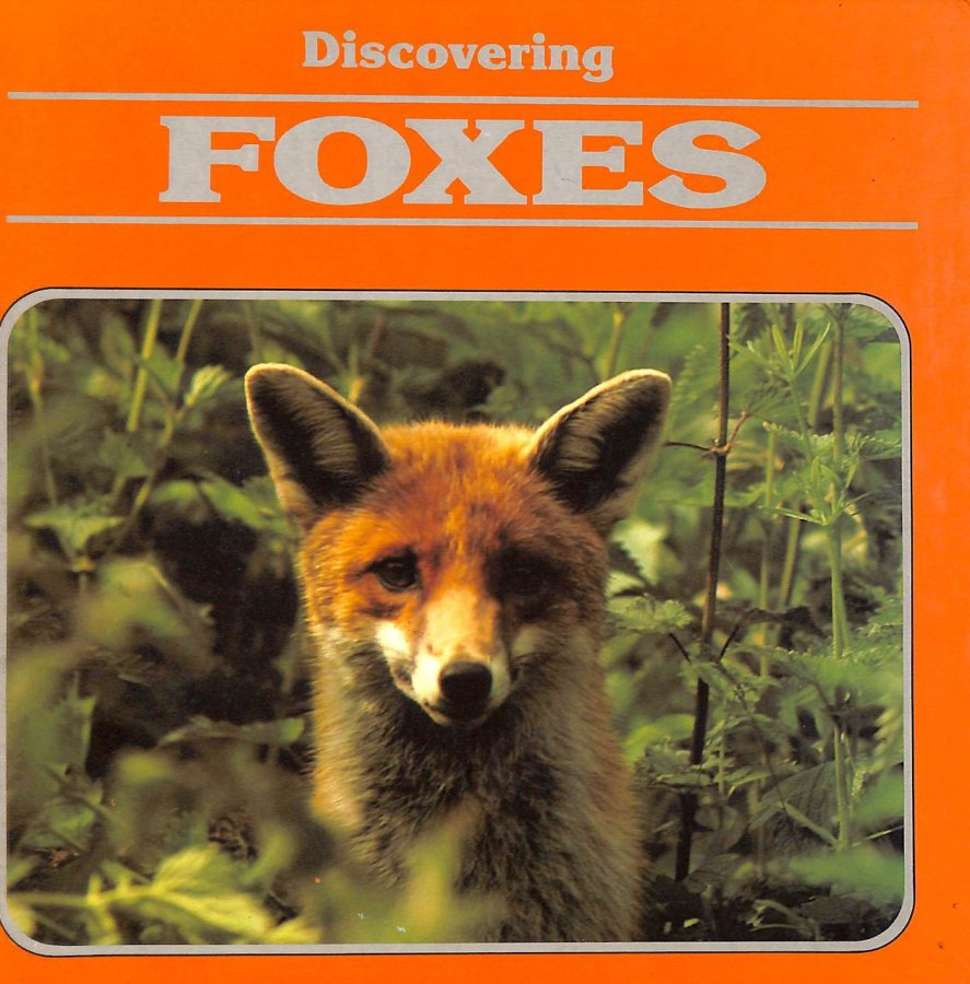 Image for Discovering Foxes (Discovering Nature)