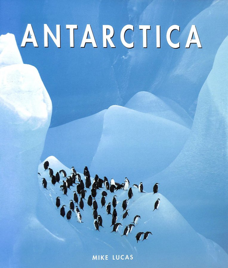Image for Antarctica (. the beautiful)