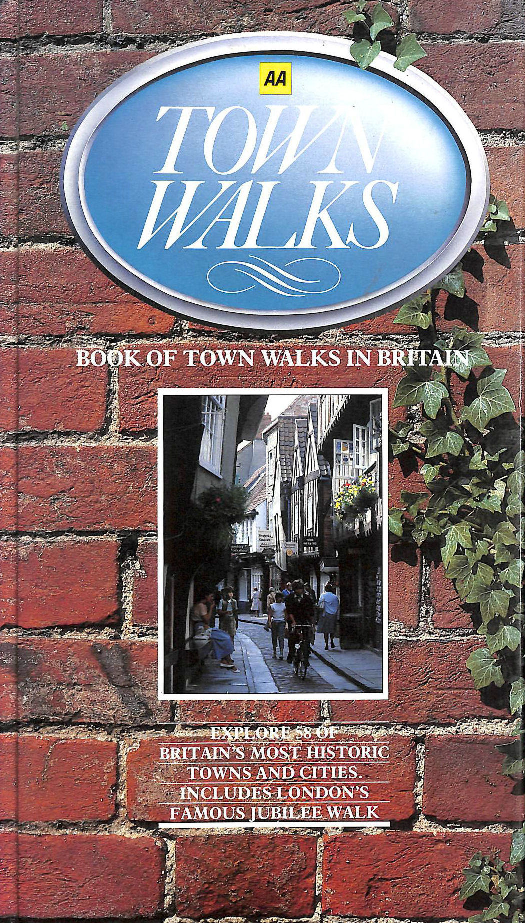 Image for Book of Town Walks