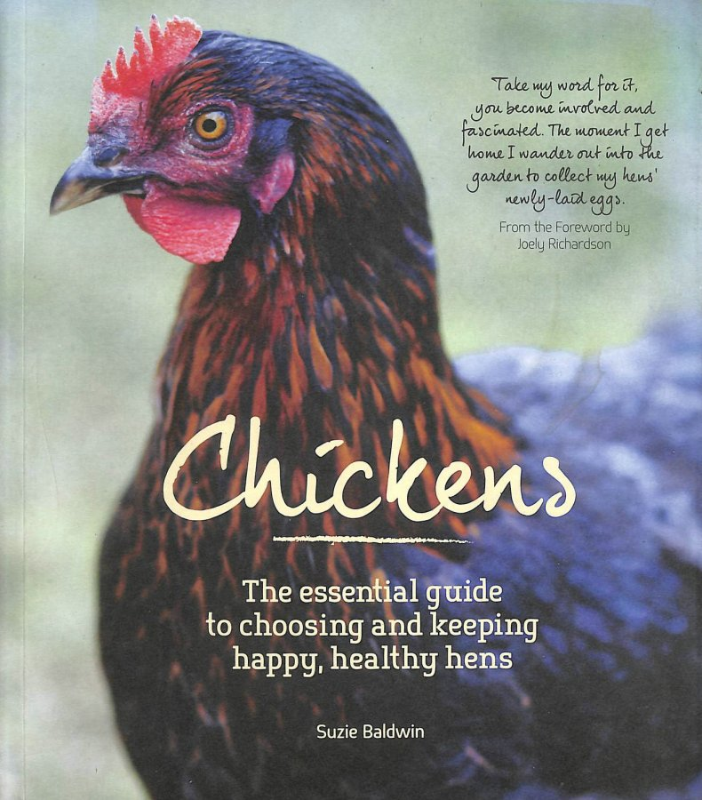 Image for Chickens