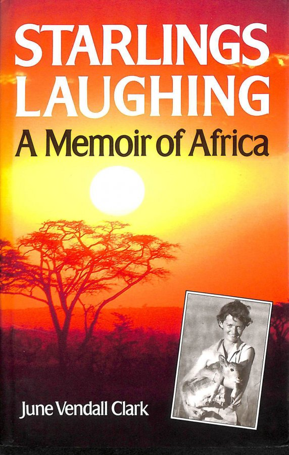 Image for Starlings Laughing: A Vision of Africa
