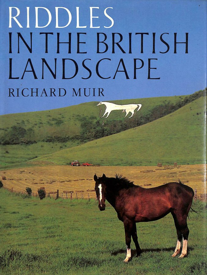 Image for Riddles in the British Landscape