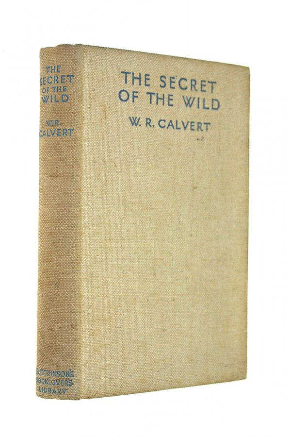 Image for The Secret of the Wild