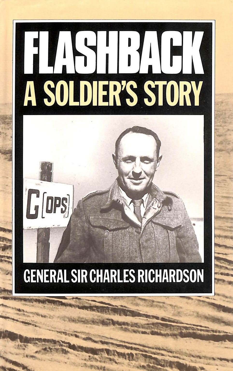Image for Flashback: A Soldier's Story