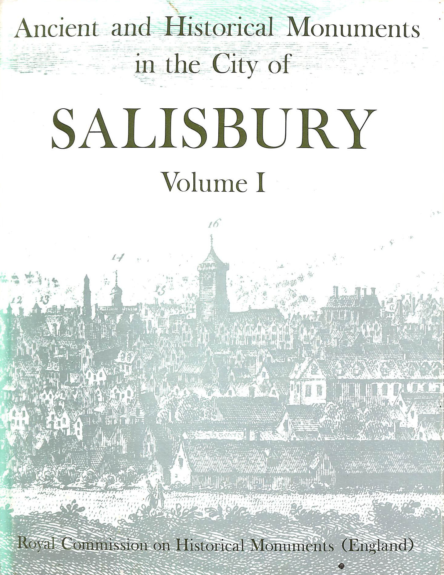 Image for Ancient And Historical Monuments In The City Of Salisbury Volume I,