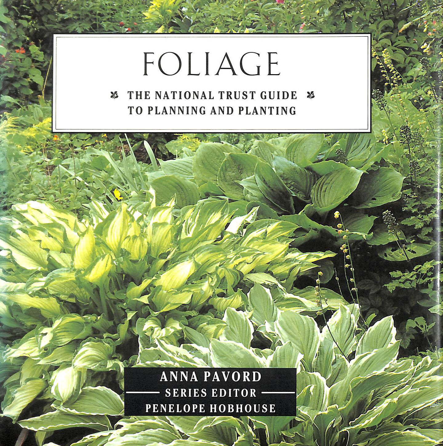 Image for Foliage Nt Gde Planting & Pla (National Trust Gardening Guides)
