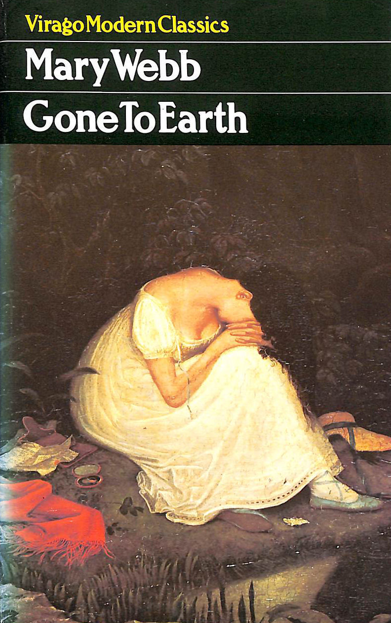 Image for Gone To Earth (Virago Modern Classics)