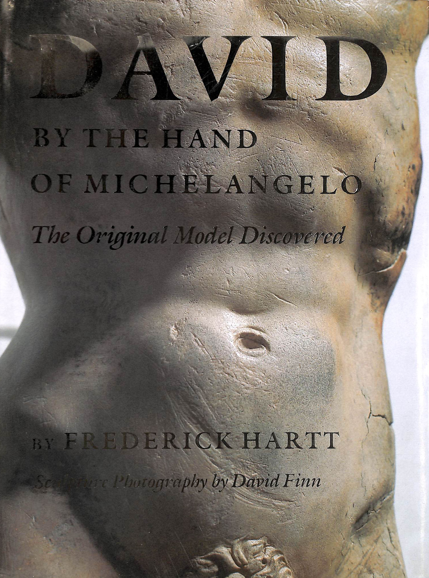 Image for David by the Hand of Michelangelo: The Original Model Discovered