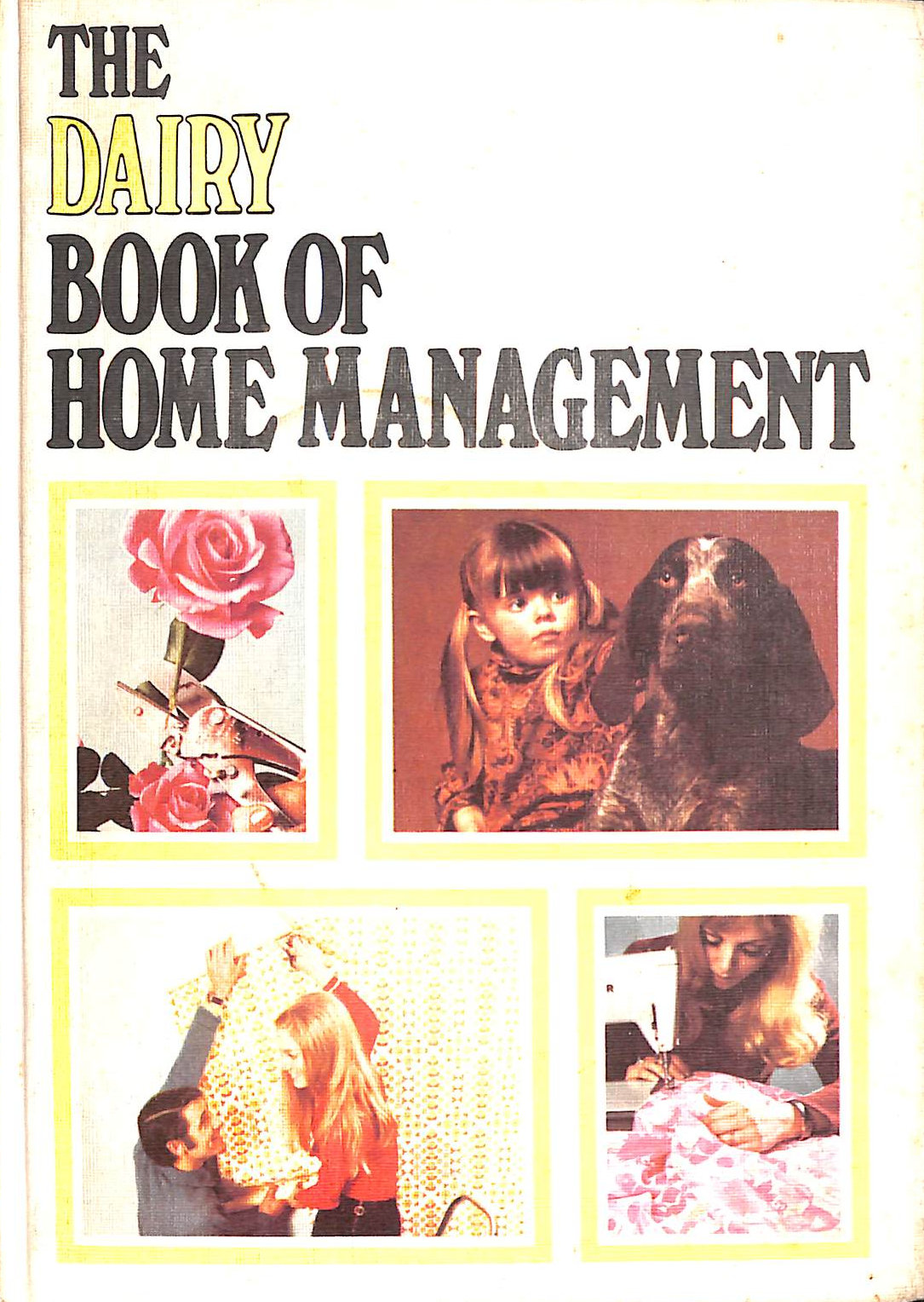 Image for Dairy Book of Home Management